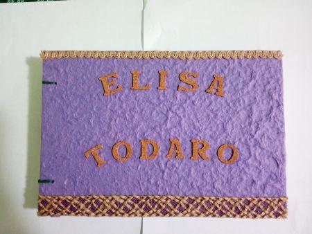 copertina Elisa